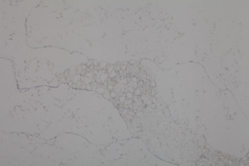 UniQuartz Silver Vein Quartz Closeup 500x333 1